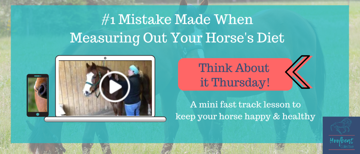 Think About It Thursday. #1 mistake when measuring your horse's feed