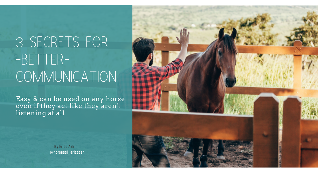 how to communicate with your horse starts with being able to listen to what they have to say. Discover 3 secrets to communicate better with your horse leading to clear understanding