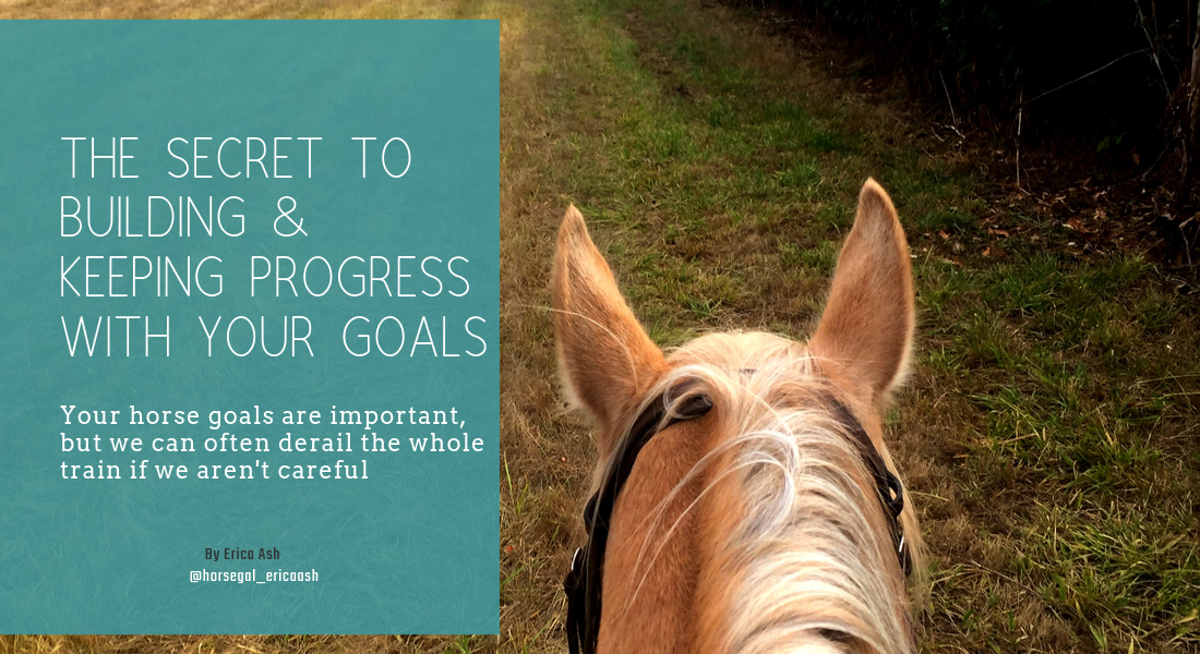 The secret to building (& keeping) progress with your horse goals. we set big goals with our horse training and that's great, but sometimes they get off track. 3 secrets to keeping that progress and mindset strong
