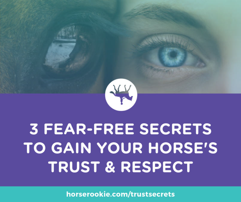 3 fear free secrets to gain your horse's trust and respect