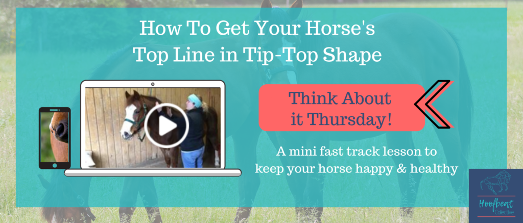 How to build horse's top line