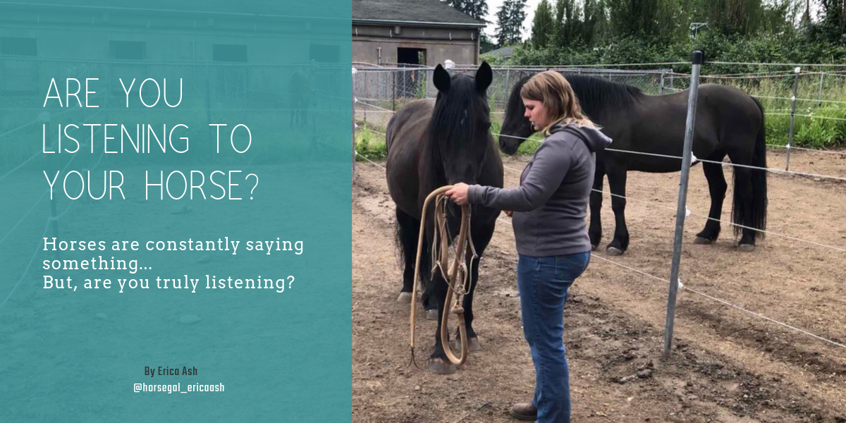how to communicate with your horse starts with being able to listen to what they have to say.